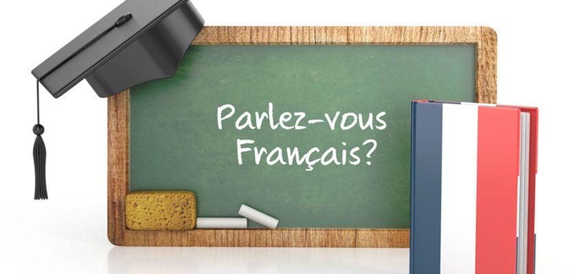 Livres Francais Les Plus Populaires Pour Debutants Ila